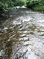 A powerful current at Tarr Steps - geograph.org.uk - 926234.jpg