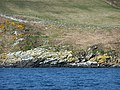 A small prominence in the coastline - geograph.org.uk - 1815268.jpg