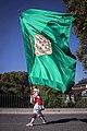 Abanderado San Fermín de Aldapa.jpg