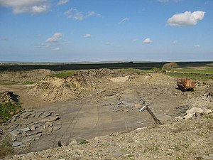 Orcadian Basin - Flagstone quarry near Thurso, Caithness