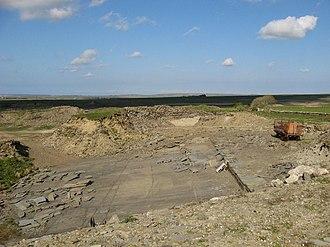 Orcadian Basin - Flagstone quarry near Thurso, Caithness