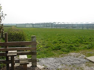 Much Hoole - Image: Acres of greenhouses, Much Hoole Town geograph.org.uk 158096