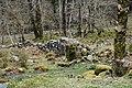 Afon Eden - geograph.org.uk - 387455.jpg