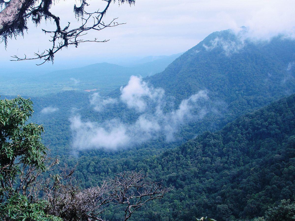 Agumbe Wikipedia