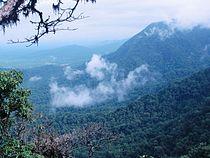 Agumbe View point.jpg