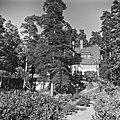 Ainola puutahan puolelta, 1940-1945, (d2005 167 6 116) Suomen valokuvataiteen museo.jpg