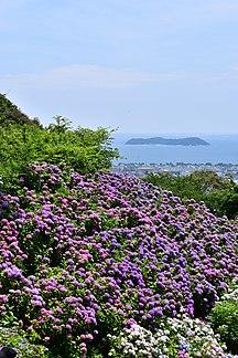 愛知縣-旅遊-Ajisainosato1