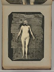 Album of Paris Crime Scenes - Attributed to Alphonse Bertillon. DP263673.jpg