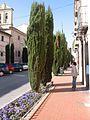 Alcalá de Henares (Madrid) calle Santa Úrsula.jpg