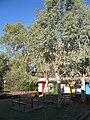 Alice Springs - Alice's Secret hostel (4099764937).jpg