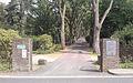 Allee, Hauptfriedhof, Neuss.jpg