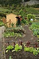 Allotment display, Eden Project - geograph.org.uk - 815497.jpg