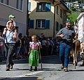 Alpabfahrt, Mels. 2019-09-14 13-08-00.jpg