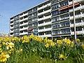 Alphen a-d Rijn - panoramio (18).jpg