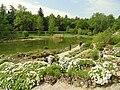 Alpine garden, Botanischer Garten München-Nymphenburg - DSC07641.JPG