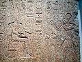 Amenhotep II Relief Bubastis Crop.JPG
