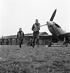 American volunteer pilots of No.121 (Eagle) Squadron run to their aircraft at RAF Rochford in Essex, August 1942. D9521.jpg