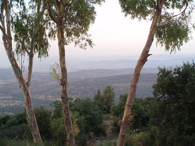 Amirim Israel  city pictures gallery : Sunrise over the Galilee from Moshav Amirim, Israel. Mt. Tabor is ...