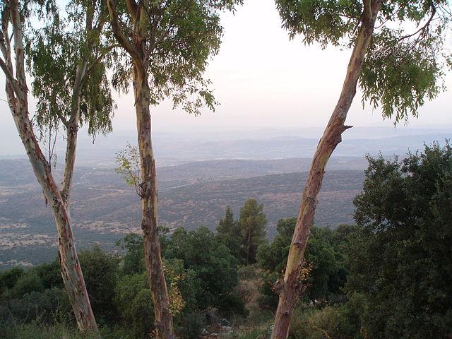 Amirim Israel  city photos gallery : Sunrise over the Galilee from Moshav Amirim, Israel. Mt. Tabor is ...