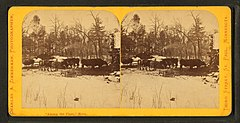 Among the pines, Minn, by Zimmerman, Charles A., 1844-1909 2.jpg