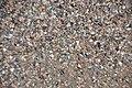 Anthill with fuchsitic rock fragments & garnet; Laramie Range, Wyoming, USA) 2.jpg