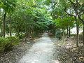 Aomi Green Park.jpg