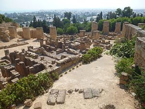 Third Punic War - Image: Archaeological Site of Carthage 130237