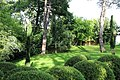 Architectural planting at Nuthurst village, West Sussex, England 02.jpg