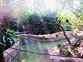 Area de Monos, Parque Biouniverzoo. - panoramio.jpg