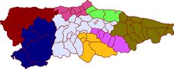 Areas sanitarias Asturias.png