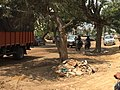 Attibele, Karnataka 562107, India - panoramio - Christian Lederer (16).jpg