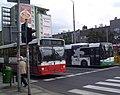 Autobusy w Szczecinie.jpg