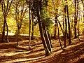 Autunno - panoramio (2).jpg