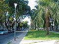 Avenida Francia Rosario 1.jpg