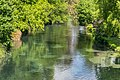 Avon River in Christchurch 08.jpg
