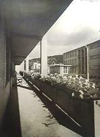 BASA-3K-7-521-14-Masarykovy domovy.jpg