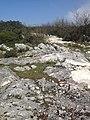 BLOKLU ÜST JURA ALT KRATESE HOMOJEN KALIN TABAKALI 68 DERECE YATIMLI BLOKLU - panoramio.jpg