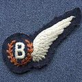 B half wing.jpg