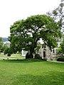 Baden Baden - panoramio (23).jpg
