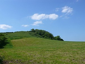 Ball Hill, Dorset - Ball Hill seen from Folly where the Wessex Ridgeway crosses the road between Plush and Mappowder