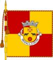 BandeiraPV.png