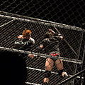 Barrett into the Cage.jpg