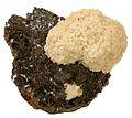 Baryte-Sphalerite-37743.jpg