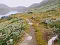 Beginning of trail counter clockwise Lake Tasersuaq hike Qaqortoq Greenland.jpg