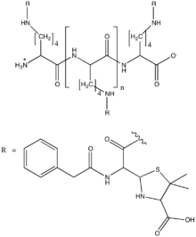 Benzylpenicilloyl polylysine (structural diagram).png