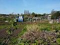 Beverley Community Gardens (geograph 2881577).jpg