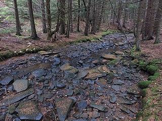Big Run (North Fork South Branch Potomac River tributary)
