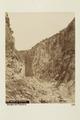Bild från familjen von Hallwyls resa genom Algeriet och Tunisien, 1889-1890 - Hallwylska museet - 92018.tif