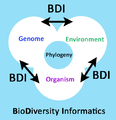 Biodiversity informatics - Journal.pbio.1001466.g001.png