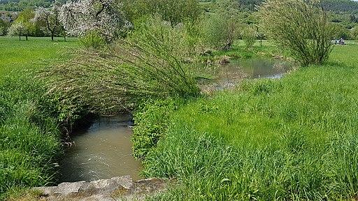Biotop am Schleifgraben (Welzbach) - Blick von der Kneippanlage bei Werbach in Richtung Hochhausen - 3